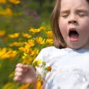 Le traitement des allergies
