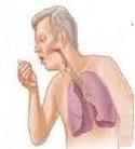 Santé des seniors: les infections broncho-pulmonaires