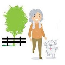 Santé seniors après 60 ans : adopter un chien et le sortir chaque jour