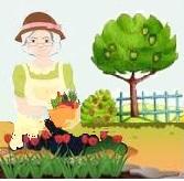 Santé des seniors après 60 ans: le jardinage pour un bon équilibre et longévité