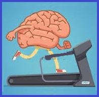 Santé seniors après 60 ans: le sport contre le déclin cognitif