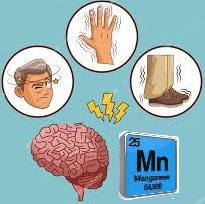 Mutuelle entreprise : les maladies professionnelles  dues au bioxyde de manganèse