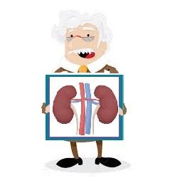 Mutuelle santé senior: le cancer du rein