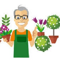 Mutuelle auto-entrepreneur fleuriste