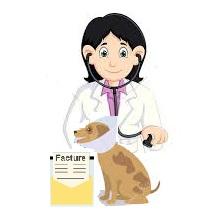 Mutuelle profession libérale vétérinaire